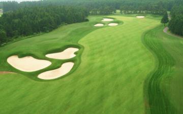 [인터뷰] '잔디야~ PGA 투어는 처음이지?' THE CJ CUP 그린 키퍼, 남태일 팀장!
