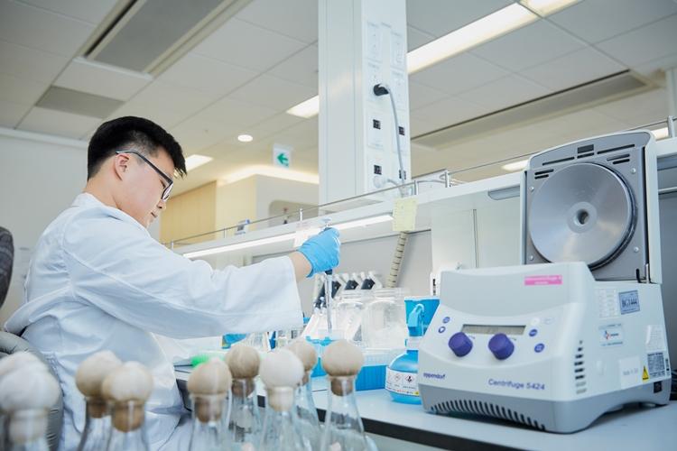 우수한 균주 선별 작업을 진행 중인 CJ제일제당 바이오연구소 연구원의 모습이다.