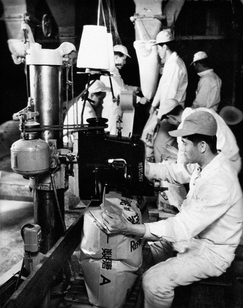 1950년대 설탕 포장 작업 모습