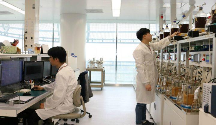 CJ제일제당 바이오연구소 연구원들이 우수한 균주를 최종적으로 선별하기 위해 발효작업을 진행하고 있다