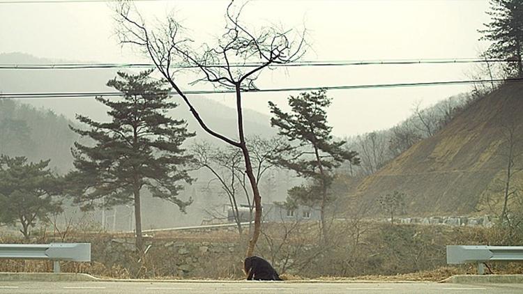 교통사고가 일어났던 도로변에 희주가 무릎을 꿇고 앉아 오열하는 모습. 그 뒤로는 앙상한 나무와 산이 보인다.