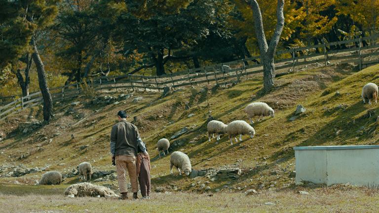 영화 '정말 먼 곳' 스틸로, 경기도 화천에 양떼 목장을 운영하고 있는 진우(강길우)가 조카 설과 함께 죽은 양을 함께 바라보고 있다.