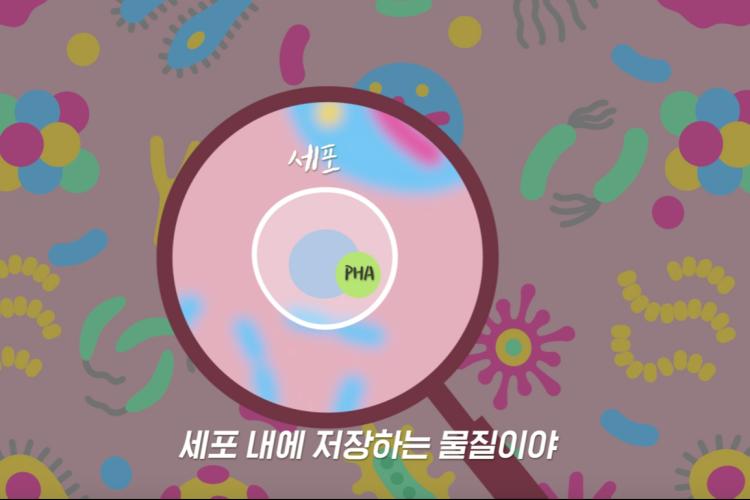 핑크색 배경으로 일러스트로 구현된 각각의 미생물들이 놓여있고, 돋보기로 한 세포와 PHA를 자세하게 보여주고 있다. 하단엔 '세포 내에 저장하는 물질이야'라는 텍스트가 삽입되어 있다.
