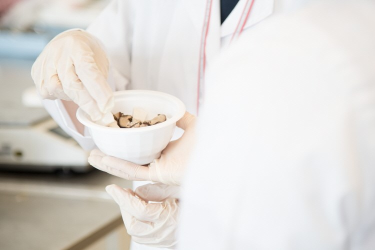 버섯을 햇반솥반 용기에 담아보는 오예진 연구원.